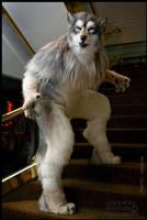 Ezwolf by Qarrezel
