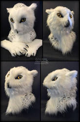 Insomniac Owl by Qarrezel