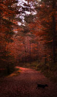 Le promenade by HyaciaHwaSeon