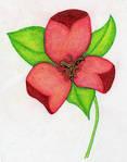 flower by sweetaj6