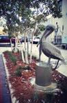 Hello, Mr.Pelican by C-K-Whisper