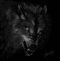 Wolf Siyah Beyaz by bunnyartofficial