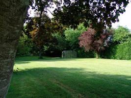 Green garden by setanta5