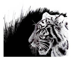 Inked Tiger by Commint