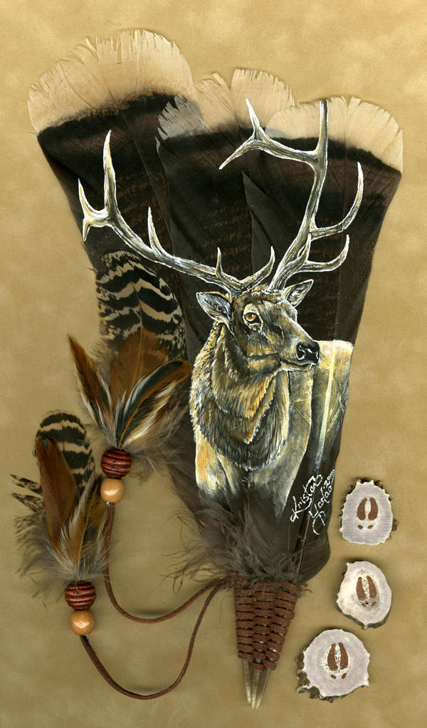 Bull Elk Feather by dittin03