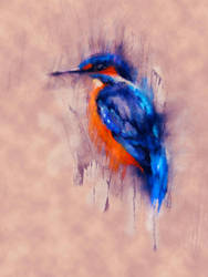 Watchful Kingfisher by serenarts