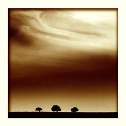 Three Trees by kharax