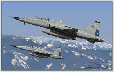 F-5E Tiger III to Magallanes by Hikaru84