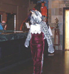 Velvet, On a 'Cat Walk' by PumaConcolor