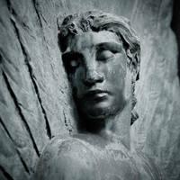 Le bel ange... by Herculanum