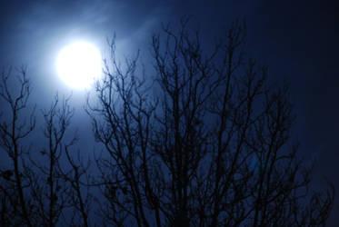 Haunted Moon by Incerazo
