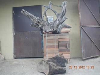 Timber by animel