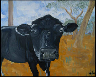 First cow attempt by animel
