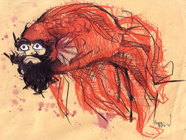 MR DAruma by snail-lady