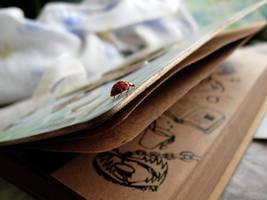 Ladybug trap by damnitsasha