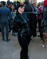 Catwoman by damnitsasha