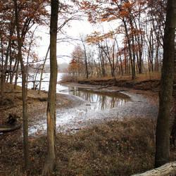 Low river by MurcMarischal