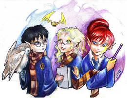 Harry Potter SPOOF by Linnpuzzle