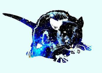 Galaxy rat by Edziowateszpargaly
