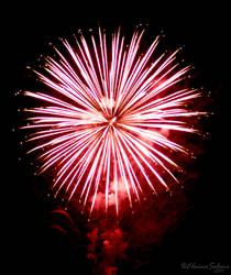 Fireworks - 6 by ElaineSeleneStock
