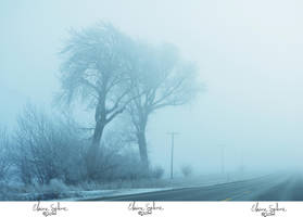 Soggy Winter Wonderland - 2 by ElaineSeleneStock