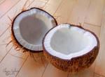 Coconut - 20 by ElaineSeleneStock