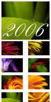 Calendar 2006 by selester