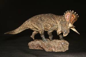 Turanoceratops tardabilis by Maastriht123