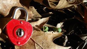 Anyone seen a key around? by adderx99