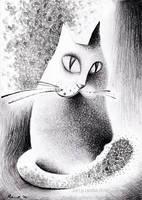 Fuzzy Cat by Stardust-Splendor
