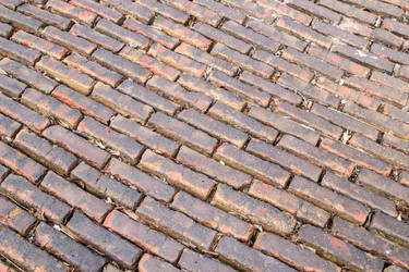 Brick Road Snake Alley by dknucklesstock