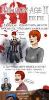 Dragon Age II Meme by bluewickedbehemoth