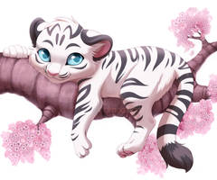 Com: White Tiger by Seyumei