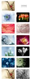 2006 Flower Calendar by nighty
