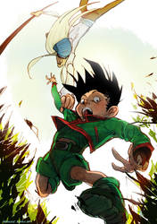 Gon/Kite by ipercalisse