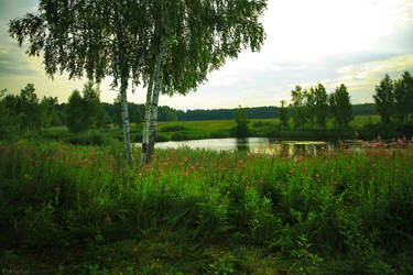 Lake by VAMPIdor