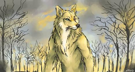 Golden werewolf by Kipine