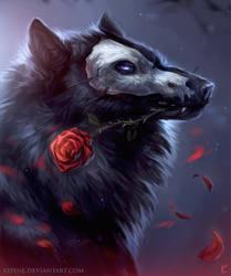 Master of Shadows by Kipine