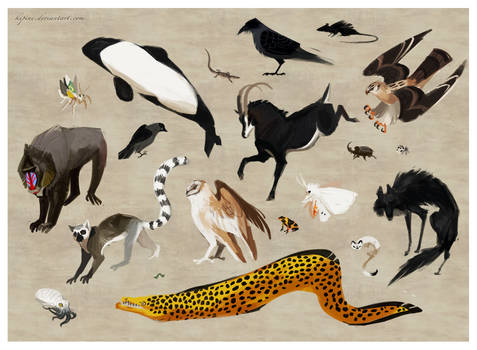 Favorite Animals by Kipine