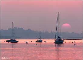 L1752 - Pink morning. by Lothringen