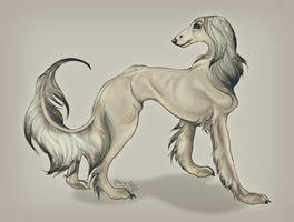 Hairy Mongrel by fangedhorse