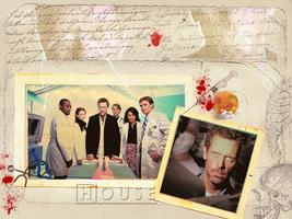 House MD Wallpaper by poturiye