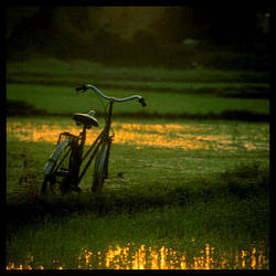 Hoi An by thedecolab