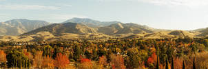 Concord Hills by Weise-Imagery