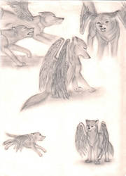 Winged Wolf Sketch Dump by Miku-Nyan02