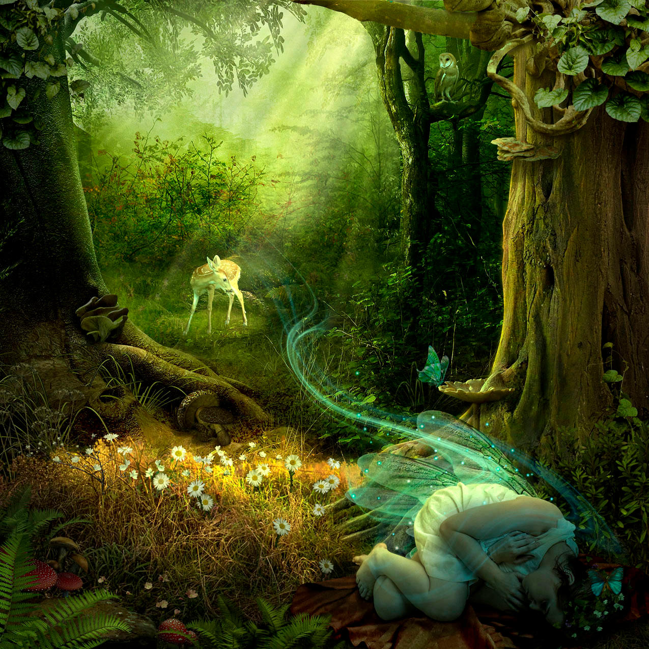 Sleeping Faerie by funkwood