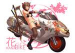 HanabiKE Chamber maid Samurai by dcwj