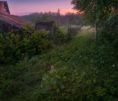 Forgotten dawn by xrust