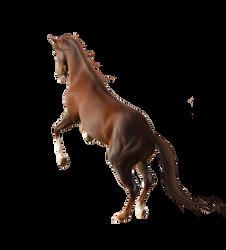 Horse Pre-Cut #1 by Satrumm