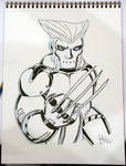 Robo Wolverine - ECCC 2012 by jtchan